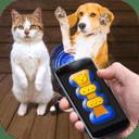 猫猫狗狗翻译器