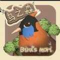 鸟之森游戏