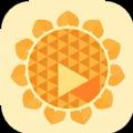 秋葵视频软件
