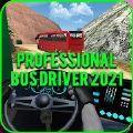 专业巴士司机2021