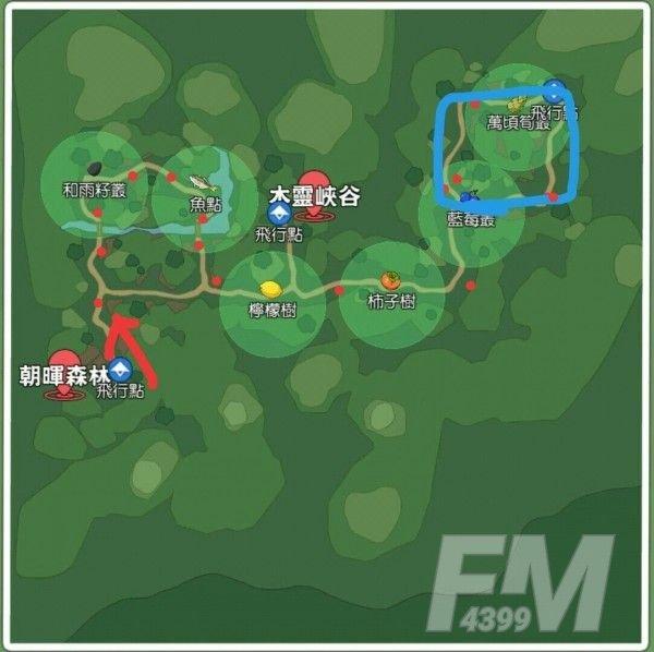 小森生活闪灯果实在哪 闪灯果实刷新位置大全[多图]图片2