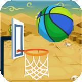 篮球灌篮Pro
