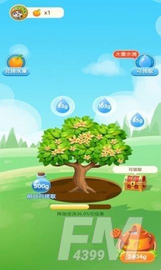 宝宝来种树