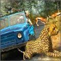 野生生存狩猎