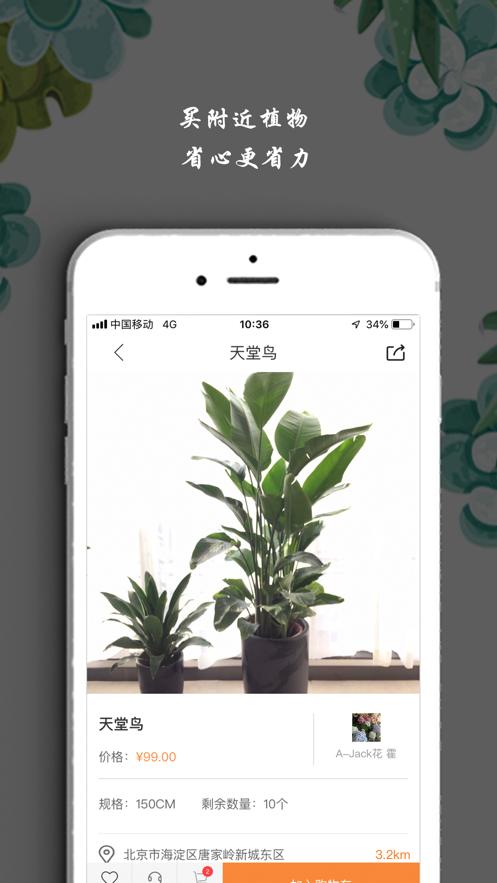 淘花运买卖花卉植物截图