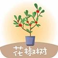 花椒树贷款