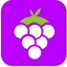 紫葡萄直播