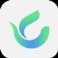 绿茶交友app
