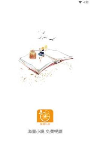 甜橙小说截图