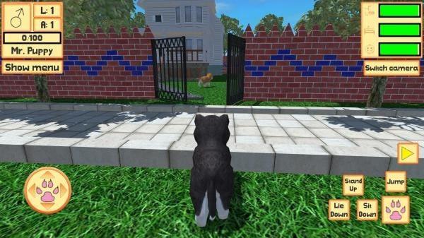 可爱的口袋小狗3D
